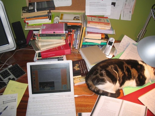 laptop,books, cat, working from home